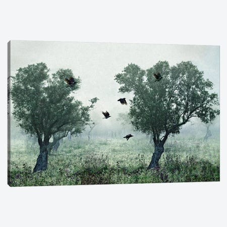 Crows In The Mist Canvas Print #OXM4002} by S. Amer Canvas Wall Art