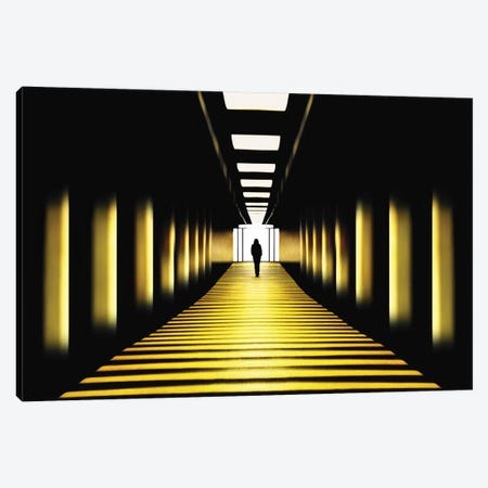 Sunny Path Canvas Print #OXM4008} by Samanta Krivec Canvas Wall Art