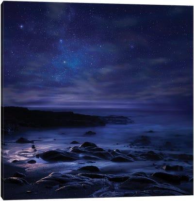 Insomnia Canvas Art Print