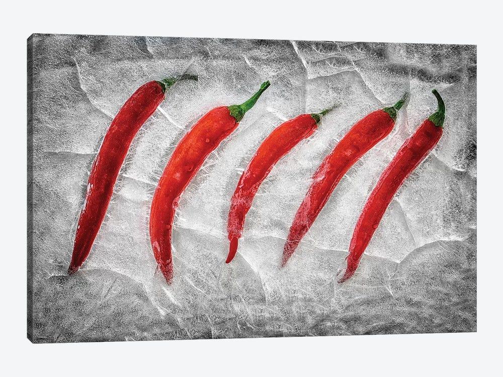 Frozen Fire by Secundino Losada 1-piece Canvas Art Print