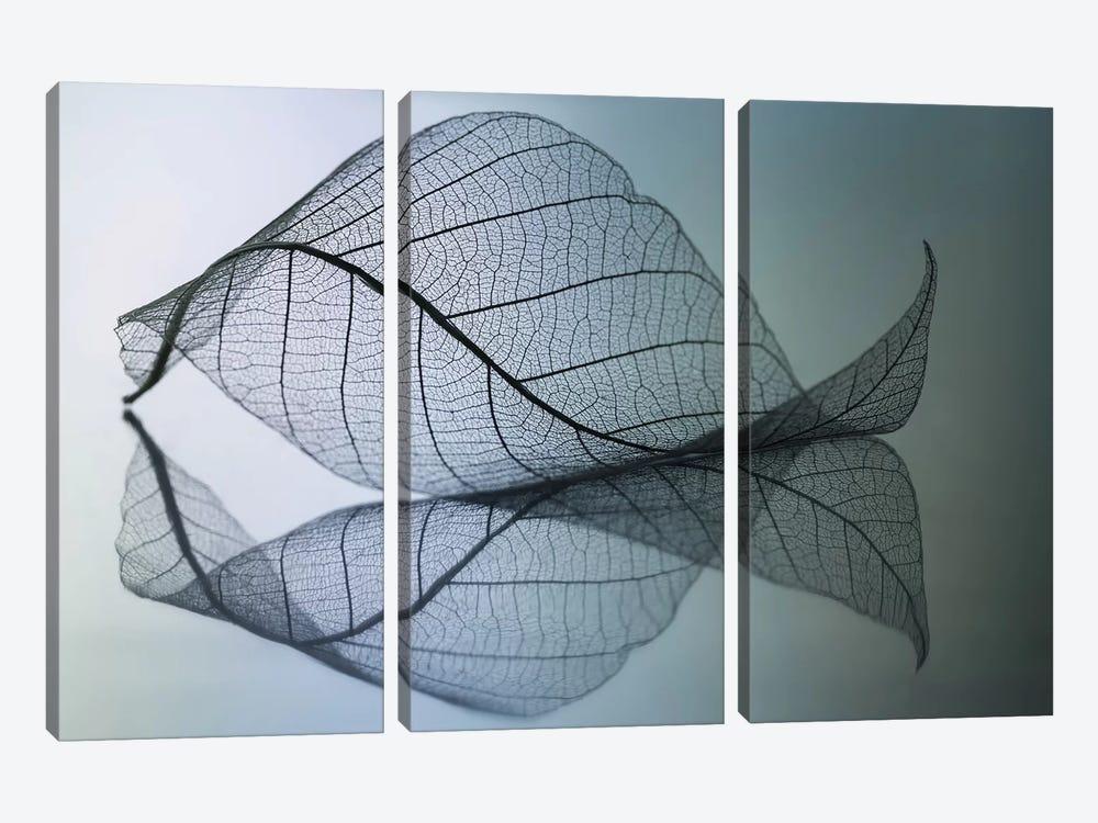 Curvaceousness by Shihya Kowatari 3-piece Art Print