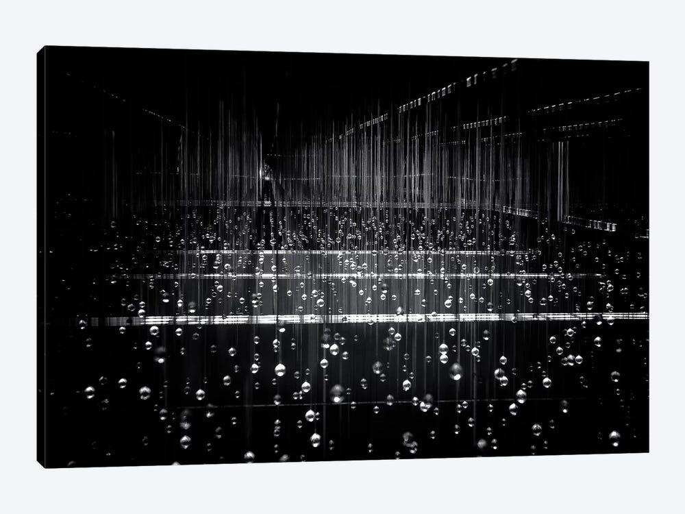 Frozen Rain by Soo Sing Goh 1-piece Art Print