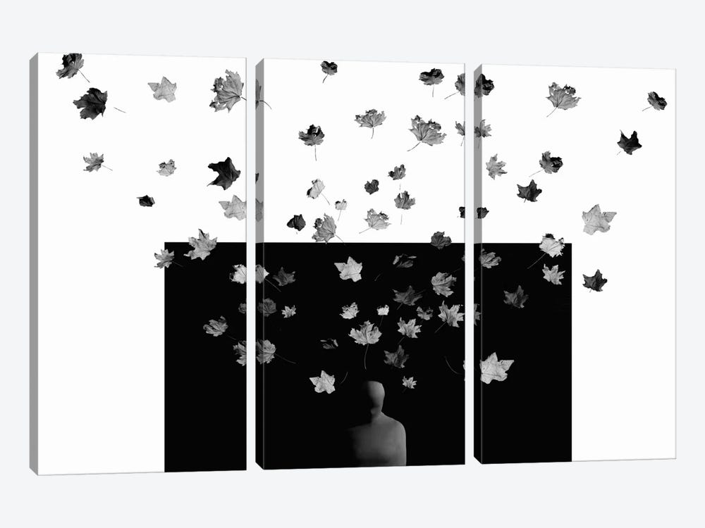 Cocoon by Maryam Zahirimehr 3-piece Canvas Print