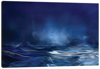 Fly Away Canvas Art Print