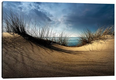 Dunes........... Canvas Art Print