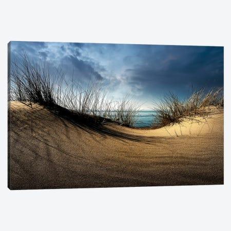 Dunes........... Canvas Print #OXM4118} by Wim Schuurmans Canvas Art