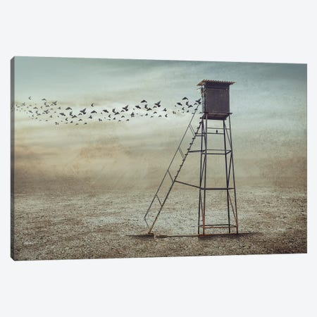 Go To Nature Canvas Print #OXM4153} by Sulaiman Almawash Canvas Art
