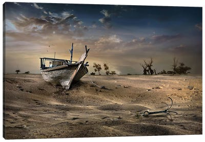 Ship In The Desert Canvas Art Print