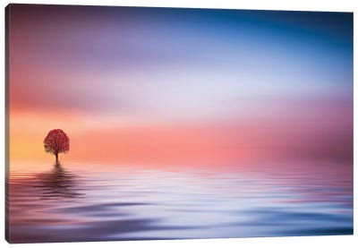 Lake Canvas Art Print