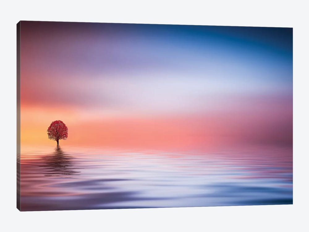 Lake by Bess Hamiti 1-piece Art Print