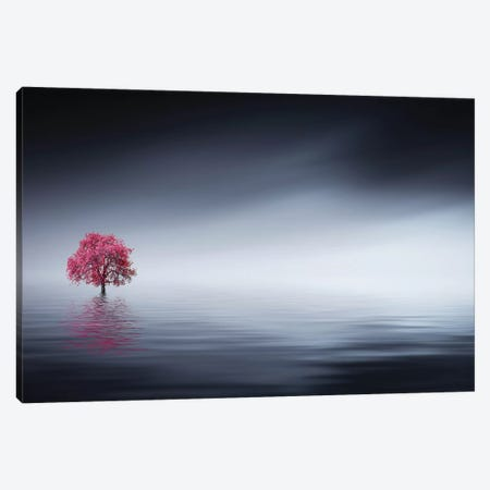 Pink Tree At Lake 3-Piece Canvas #OXM4176} by Bess Hamiti Canvas Print
