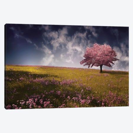 Tree Canvas Print #OXM4180} by Bess Hamiti Canvas Print