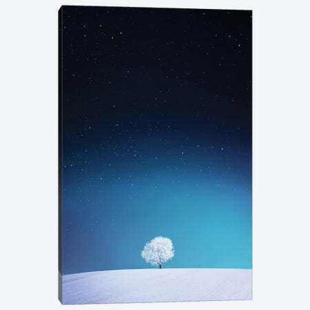 Apple I Canvas Print #OXM4191} by Bess Hamiti Canvas Artwork