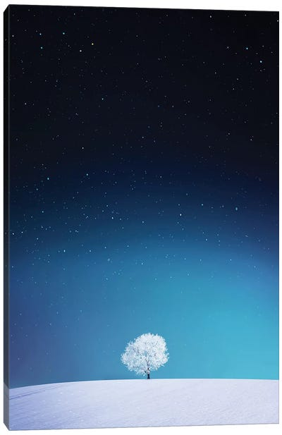 Apple I Canvas Art Print