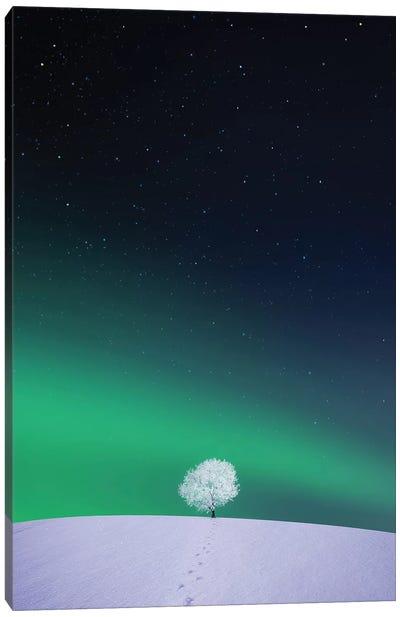 Apple II Canvas Art Print