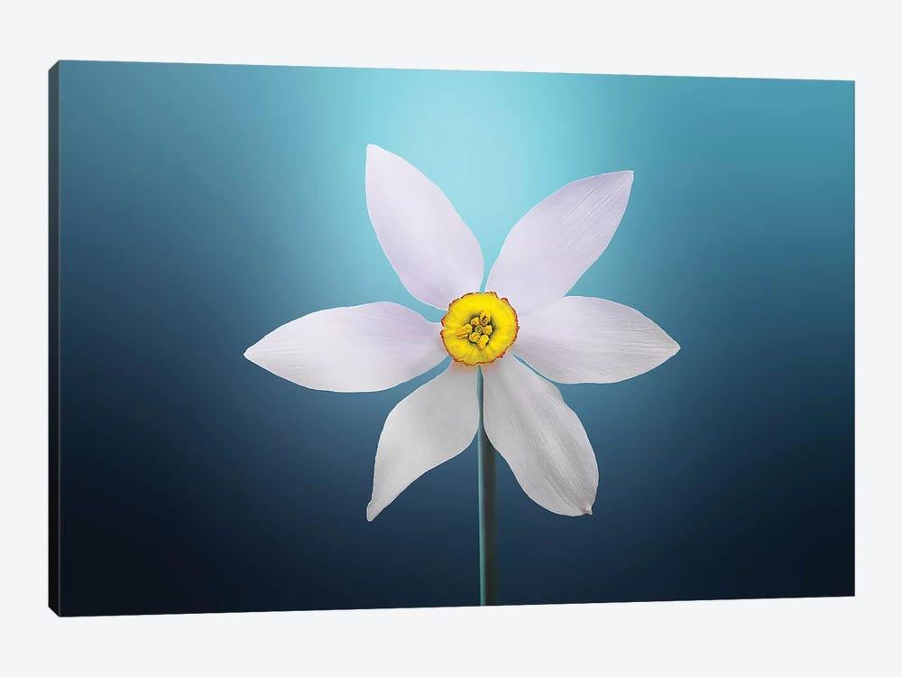 Flower Paradise On Blue Background by Bess Hamiti 1-piece Art Print
