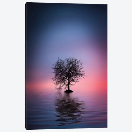 Lone Tree Canvas Print #OXM4202} by Bess Hamiti Canvas Wall Art