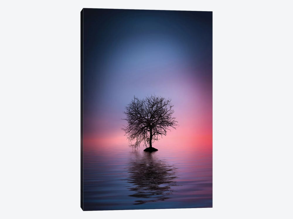 Lone Tree by Bess Hamiti 1-piece Canvas Artwork