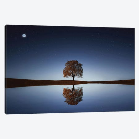 Reflection Canvas Print #OXM4204} by Bess Hamiti Canvas Print