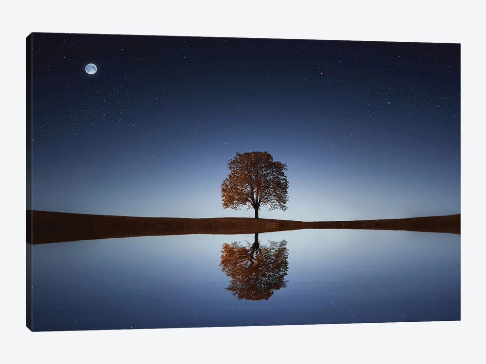 Reflection by Bess Hamiti 1-piece Canvas Wall Art