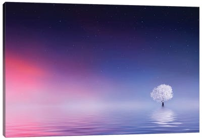 Tree In Winter On A Lake Canvas Art Print