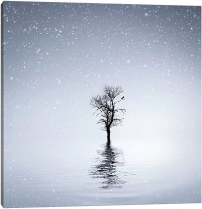 Winter Scene At Batlava Lake Canvas Art Print