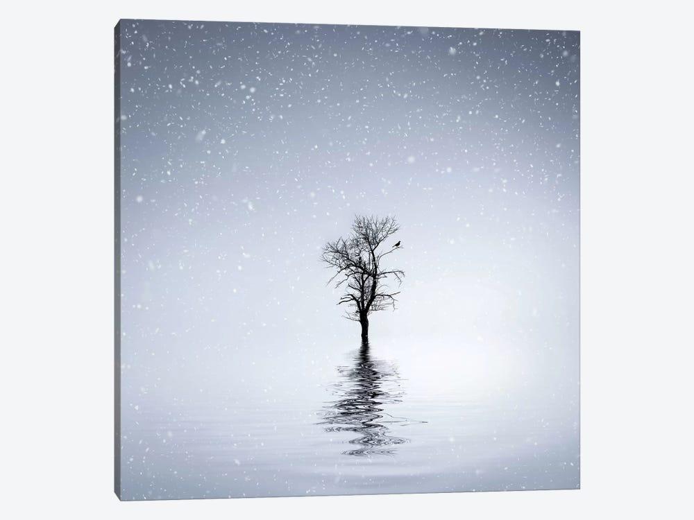 Winter Scene At Batlava Lake by Bess Hamiti 1-piece Canvas Art Print
