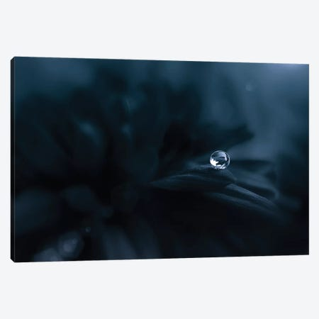 Dew in The Dark Canvas Print #OXM4223} by Edy Pamungkas Canvas Artwork