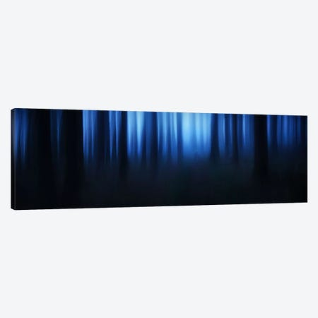 Blue Hour Canvas Print #OXM422} by Burger Jochen Canvas Wall Art