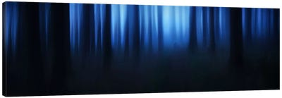 Blue Hour Canvas Print #OXM422