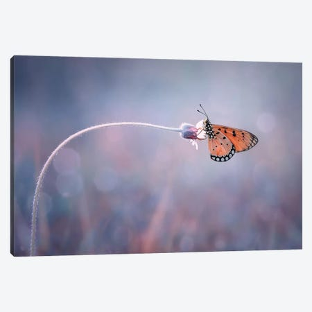 Lonely I Canvas Print #OXM4230} by Edy Pamungkas Canvas Print