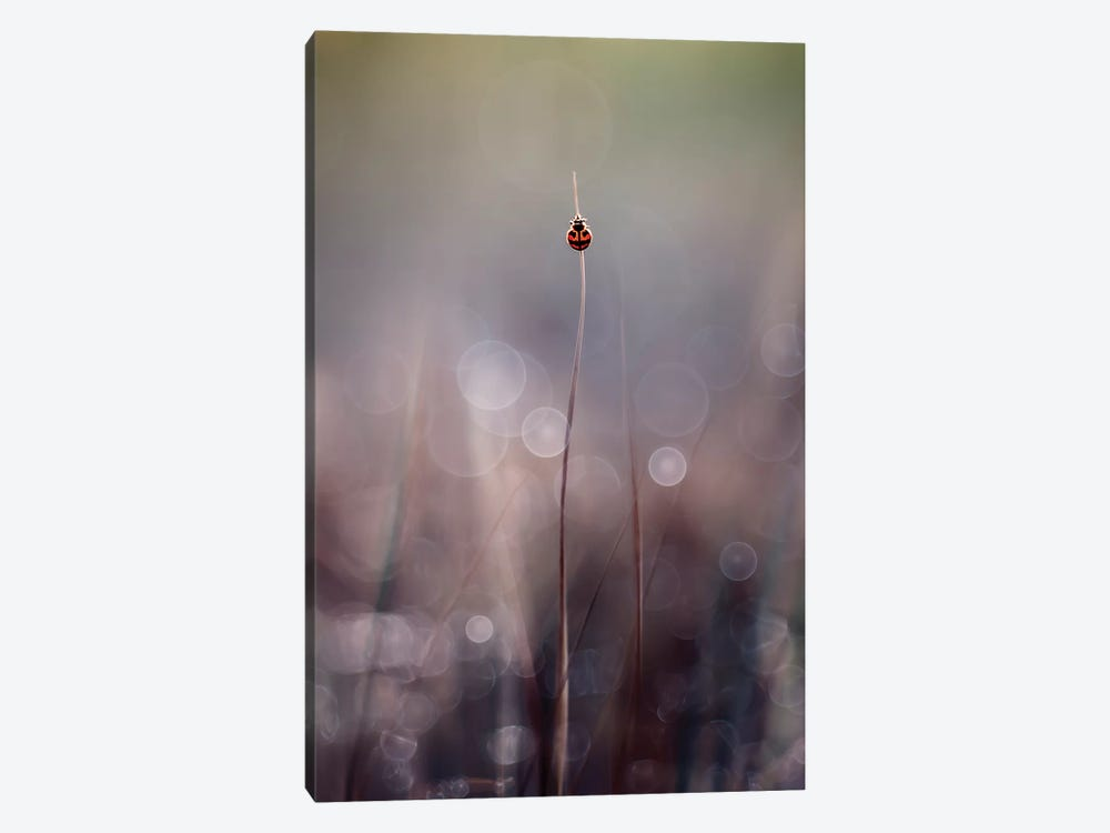 Menuju Puncak by Edy Pamungkas 1-piece Canvas Artwork