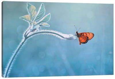 Merindukanmu Canvas Art Print