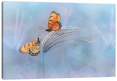 Romantic Moment Canvas Art Print
