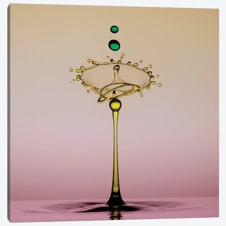 Two Drops Canvas Print #OXM4260} by Edy Pamungkas Canvas Artwork