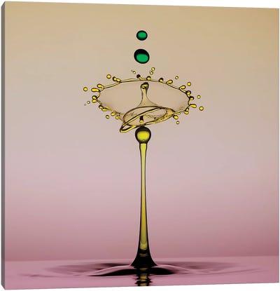 Two Drops Canvas Art Print