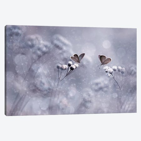 Winter With You Canvas Print #OXM4263} by Edy Pamungkas Canvas Art
