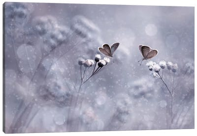 Winter With You Canvas Art Print