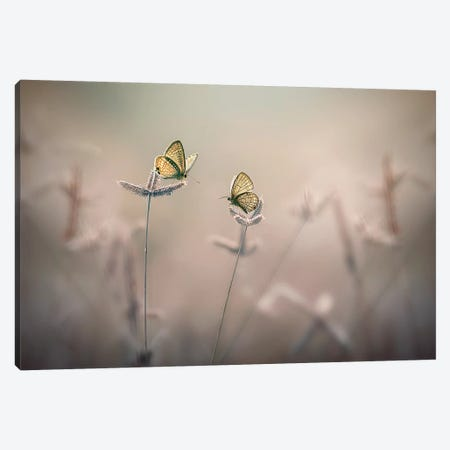 With You III Canvas Print #OXM4266} by Edy Pamungkas Canvas Art Print