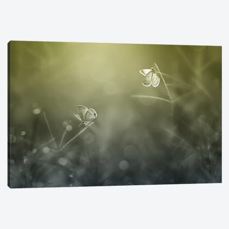 You and Me II Canvas Print #OXM4269} by Edy Pamungkas Canvas Art