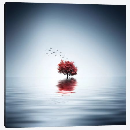 Autumn Trees Reflected Blue Lake Canvas Print #OXM4271} by Bess Hamiti Canvas Print