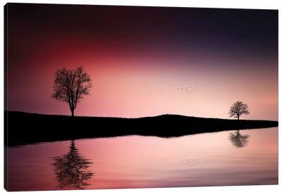 Reflections Trees Canvas Art Print