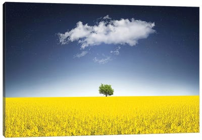 Surreal Canola Field Canvas Art Print