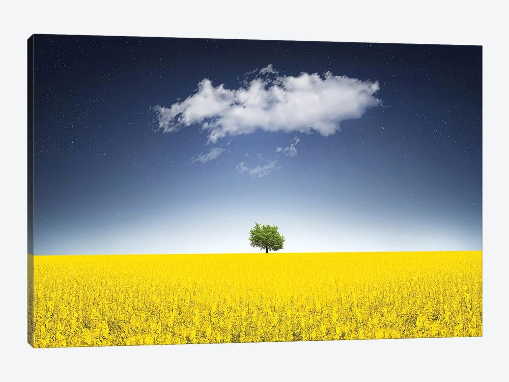 Surreal Canola Field by Bess Hamiti 1-piece Canvas Artwork