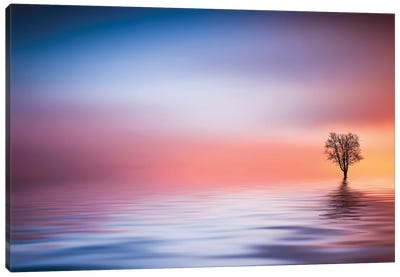 The Lake Canvas Art Print