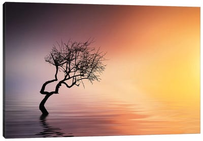 Tree At Lake Canvas Art Print
