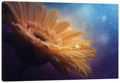 Universe Canvas Art Print