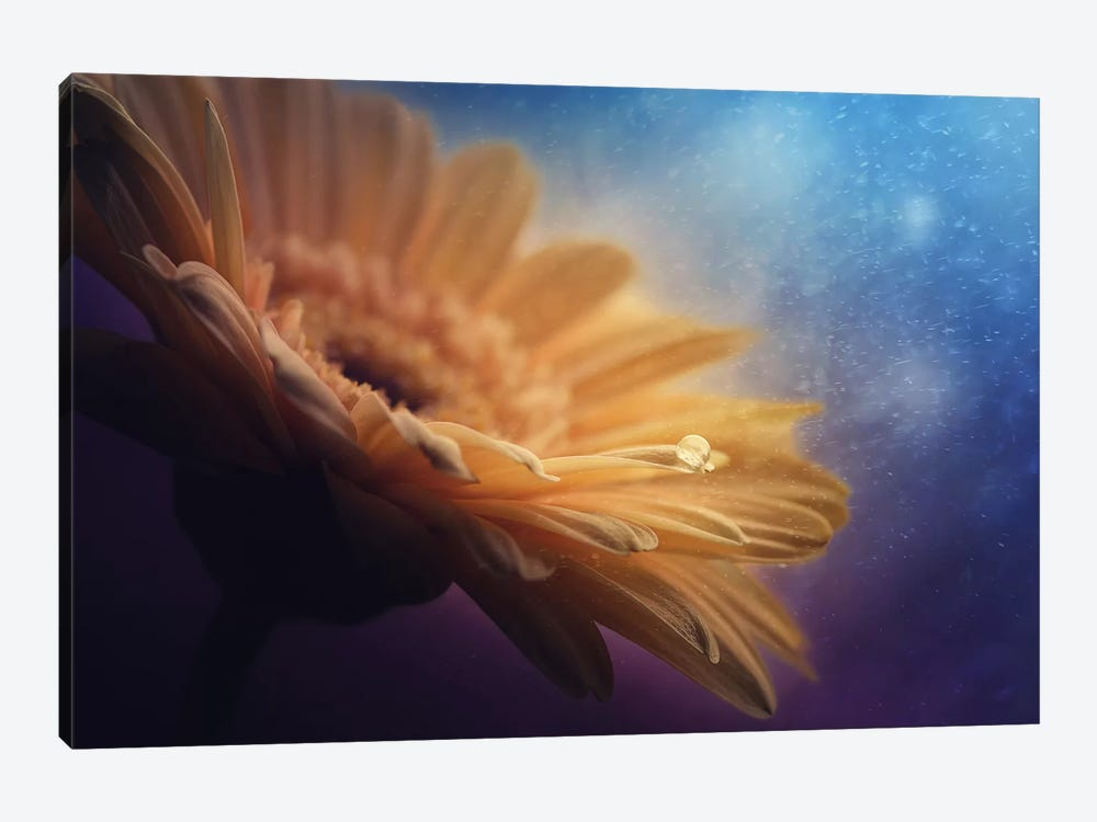 Universe by Pasztor Andras 1-piece Canvas Artwork