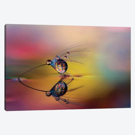 Colorize The darkness 3-Piece Canvas #OXM4330} by Heidi Westum Canvas Wall Art