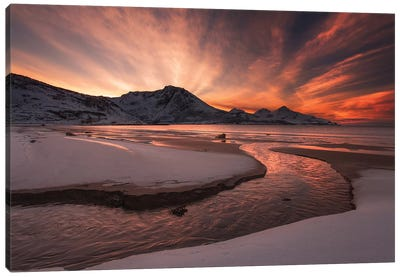 Golden Sunset Canvas Art Print